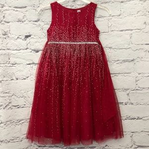 Girls Beautiful Sparkling Tulle Dress